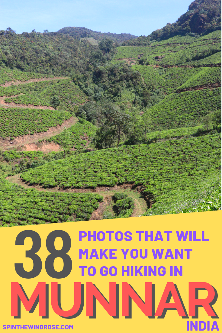38 Photos to make you want to go hiking in Munnar, India - spinthewindrose.com